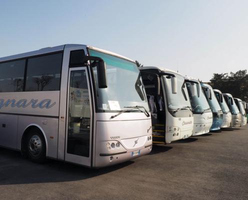 Bus Economy